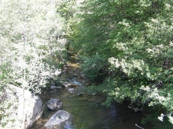 Paso por la riera de Vallfogona (Valle fértil).