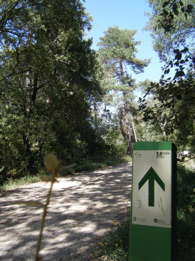 Durísima ascensión al Montseny por la sobrevía de Viladrau, con firme con mucha gravilla, suelto, seco, sin tracción y pedientes del 15-20%... toco caminar un rato.