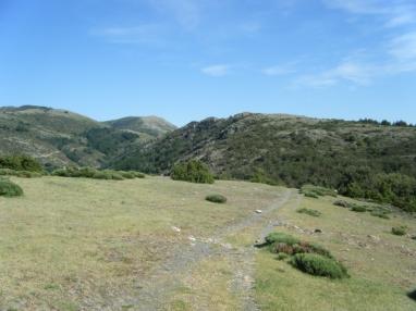 Prados alpinos... caminos bucólicos, fresco, recuperando aliendo y motivación para seguir.
