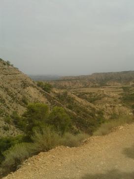 Zona de los tozales, caracteristica del paisaje de Monegros, proporcionalmente con poca presencia.