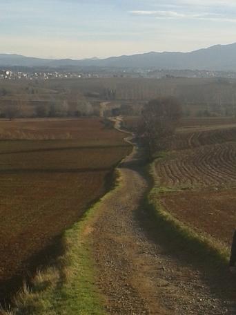La belleza del paisaje invernal de Gallecs no deja de sorprender