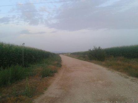 Pista rural entre campos de maíz, ducha improvisada.